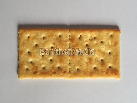 salted cracker biscuit