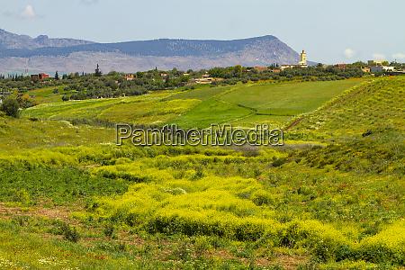 fez morocco moroccan landscape