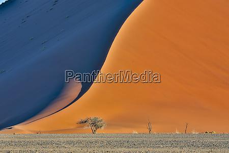 africa namibia sossusvlei dune in the