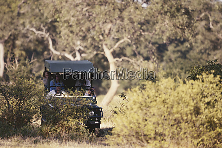 zimbabwe mana pools national park safari