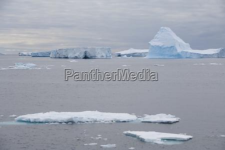 antarctica antarctic penninsula antarctic sound iceberg