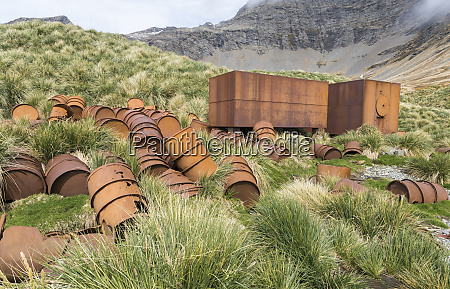 ruins of the whaling station gothul