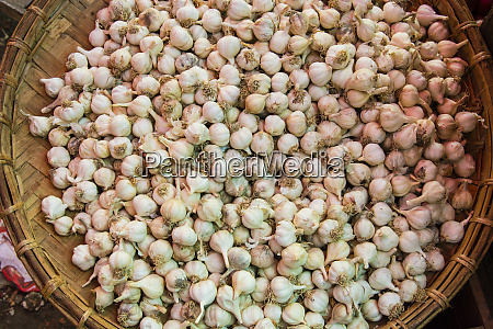 myanmar mandalay garlic for sale in