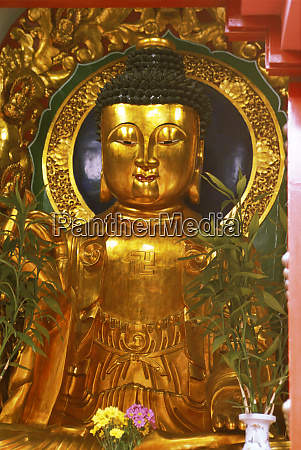 asia hong kong golden buddha in