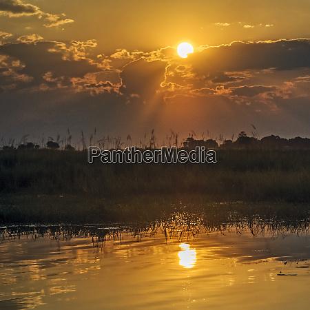 chobe river botswana africa sunset on