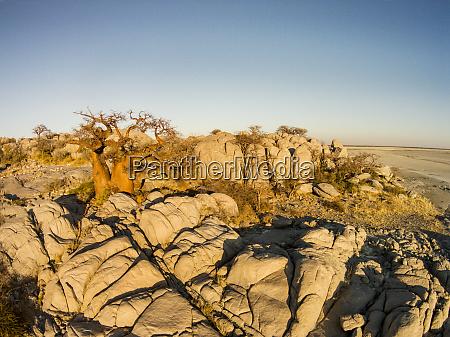 africa botswana aerial view of sunset