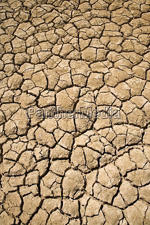 dry irrigation pond strzelecki track outback