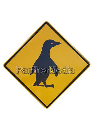 penguin warning sign new zealand