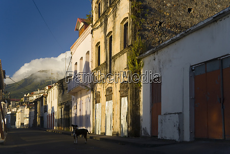martinique french antilles west indies street