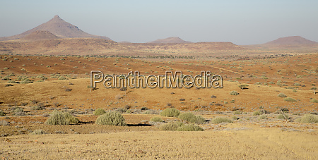 africa namibia namib desert damaraland desert