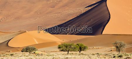 africa namibia namib naukluft park side