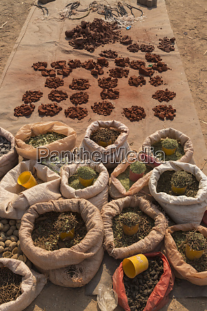 africa namibia ochre and other herbs