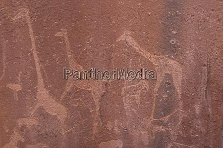 rock engravings depicting giraffes were made