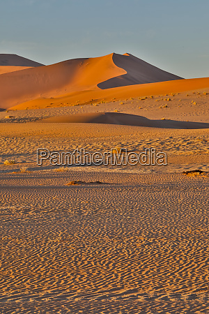 morning light on the sand dunes
