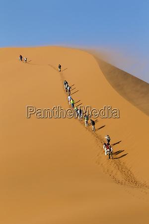 africa namibia namib desert namib naukluft