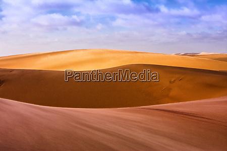 west coast namibia artistic shot of