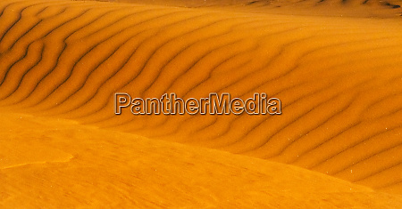 red sand dune in southern namib