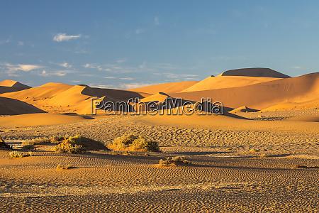 africa, , namibia, , sossusvlei, dunes, in, the - 27746068