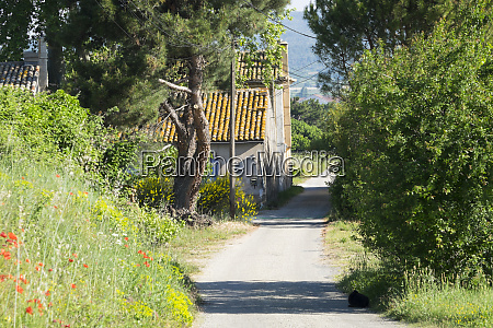 france st remy rural roads