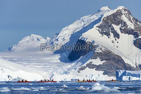 antarctica antarctic peninsula adie cove kayaking