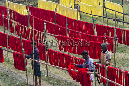 drying dyed yarn in the traditional