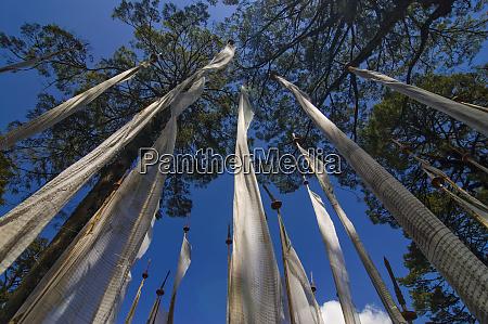 prayer flags dochula bhutan