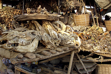 benin cotonou stall of fetishes selling
