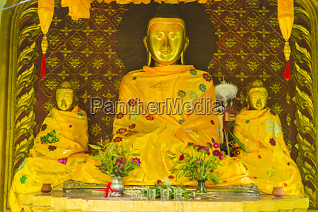 myanmar yangon sule pagoda buddha covered