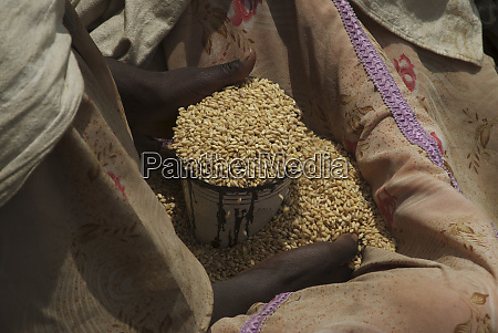 ethiopia tigray region axum grain