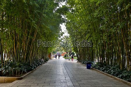 walkway in green lake park kunming
