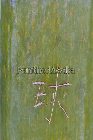 chinese characters on bamboo hongcun village