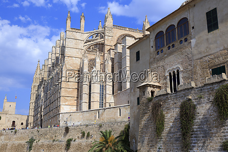 spain balearic islands mallorca cathedral of
