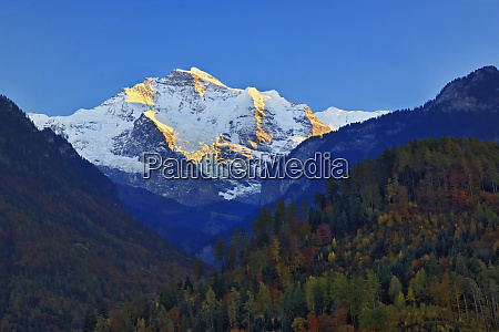 jungfrau at sunset from interlaken switzerland