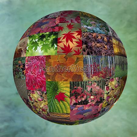 photoshop designed photographs in globe