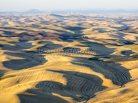 usa washington state palouse whitman county