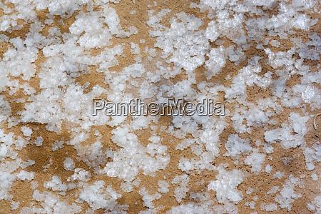 south america peru closeup of