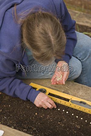 sammamish washington state usa woman planting