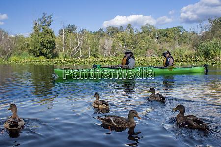usa washington state seattle kayaking in