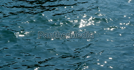 sea surface water with sunlight sparkle