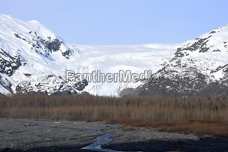 usa alaska exit glacier early spring