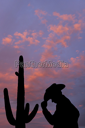 usa arizona cowboy at dusk next
