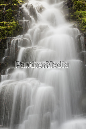 white branch falls oregon cascades oregon