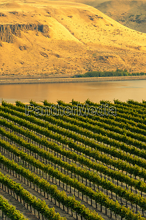 usa, , washington, state, , columbia, river, gorge. - 27787466