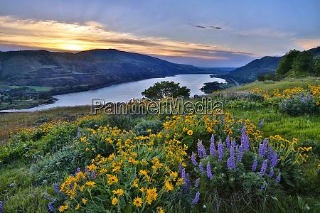 usa oregon view of lake bonneville