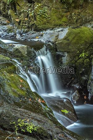 usa oregon florence waterfall in stream