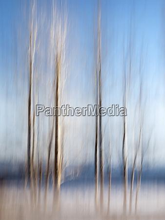 usa california lake tahoe abstract of