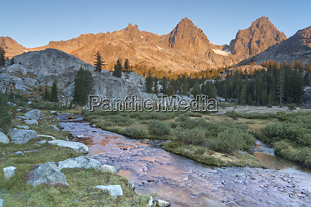 usa california inyo national forest feeder