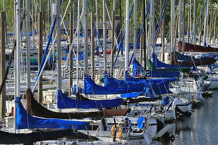 usa oregon portland sailboats docked in