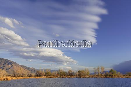 usa california landscape of buckley ponds
