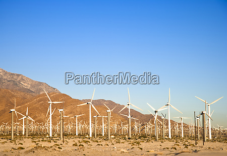 palm springs ca usa view of